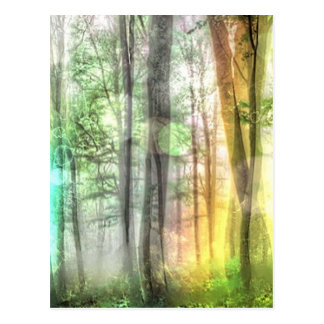 Blurred Forest Post Cards
