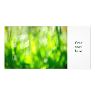 Blurred green background photo cards
