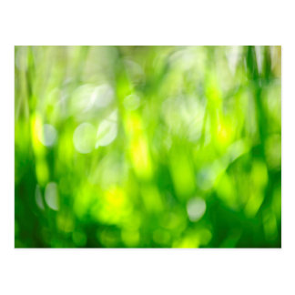 Blurred green background postcard