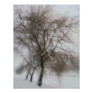 Blurred landscape photograph