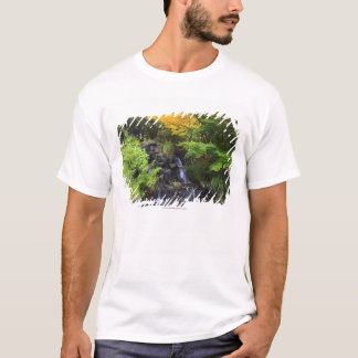 Blurred Rock Waterfall, Maple Green & Orange Trees T-Shirt