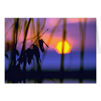 Blurred Sunset View Card