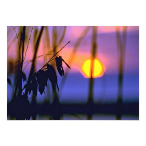 Blurred Sunset View Personalized Invitation