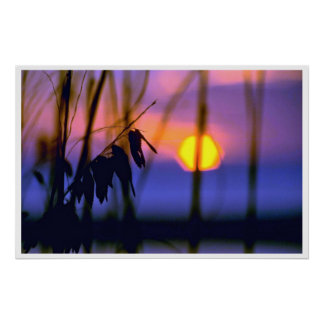 Blurred Sunset View Print
