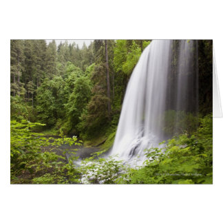 Blurred Waterfall and Forest View in Oregon Greeting Card