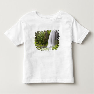 Blurred Waterfall and Forest View in Oregon Toddler T-Shirt