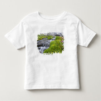 Blurry River with Yellow White Pink Wildflowers Toddler T-Shirt