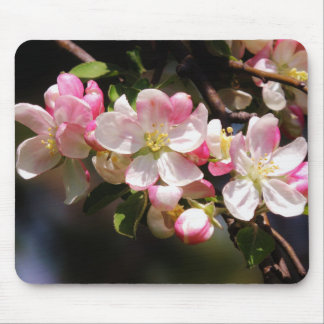 Blush Flower Easter Mousepad