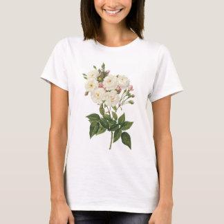 blush noisette rose(Rosa noisettiana) by Redouté T-Shirt