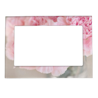 Blush Pink Carnations Picture Frame Magnets