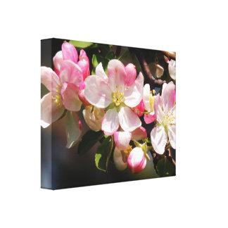 Blush Pink Spring Flowers Canvas Canvas Print