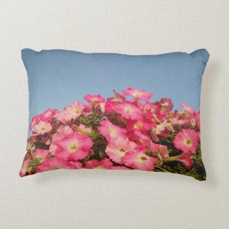 Blush to the Sky Decorative Cushion