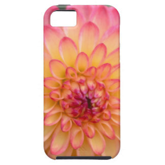 Blushing Beauty Tough iPhone 5 Case