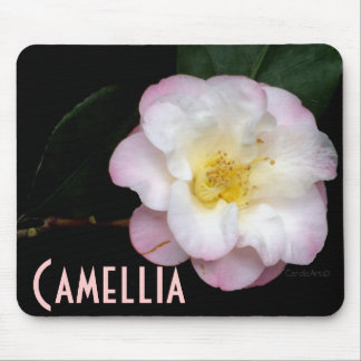 Blushing Pink Camellia Mouse Pad