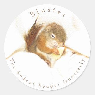 Bluster Red Squirrel Sticker