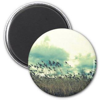 Blustering Field 6 Cm Round Magnet