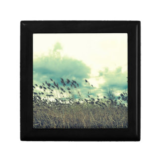 Blustering Field Small Square Gift Box