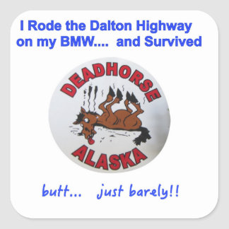 BMW Dalton Highway Survivor Square Sticker