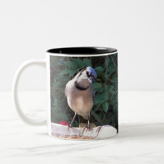 BN- Mockingbird and Blue jay mug