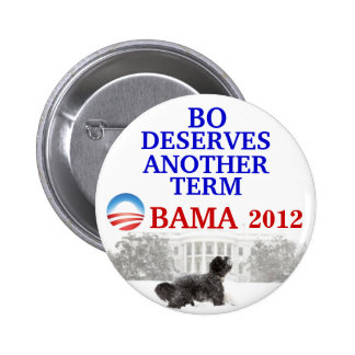 Bo Obama 2012 pin
