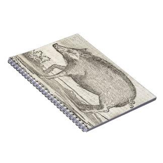 Boar Notebook