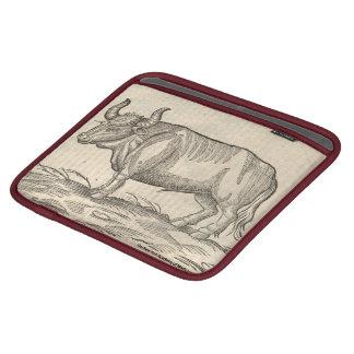 Boar & Ox iPad Sleeve