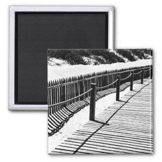 Boardwalk and dunes photo magnet