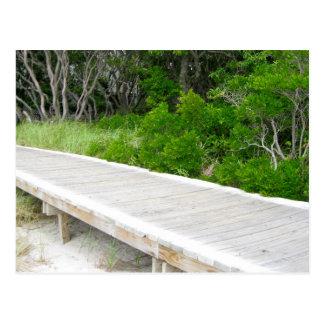 Boardwalk at Davis Park Postcard