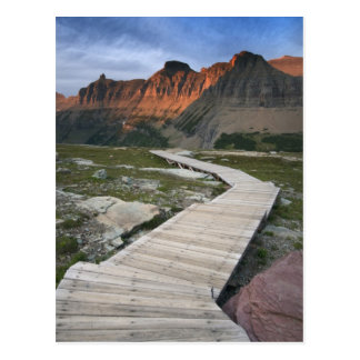 Boardwalk in Waterton Glacier International Postcard