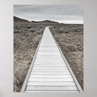 Boardwalk through the desert print