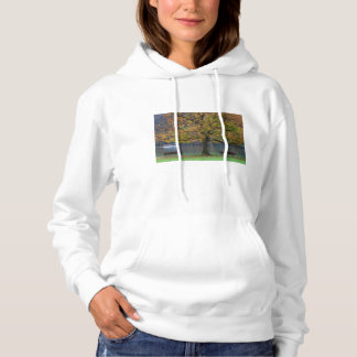 Boat on a lake in fall, Germany Hoodie