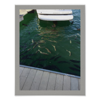 Boat with Swimming Fish Poster