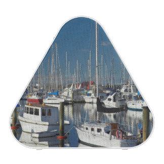 Boats at Nelson Marina