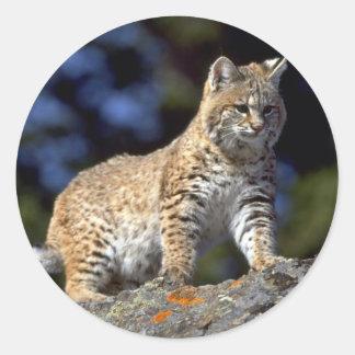 Bobcat Classic Round Sticker