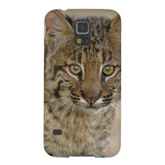 Bobcat, Felis rufus, Wakodahatchee Wetlands, Galaxy S5 Cases