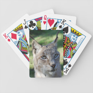 BOBCAT ~ lynx ~ Lynx ~ photo: Jean Louis Glineur Bicycle Playing Cards