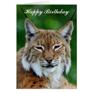 Bobcat or Lynx beautiful happy birthday card