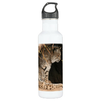 Bobcat Photo 710 Ml Water Bottle