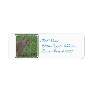 Bobcat Prowling Return Address Label