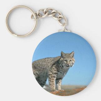 Bobcat skylined eye contact keychain