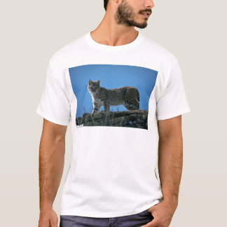 Bobcat skylined on colorful rocks T-Shirt