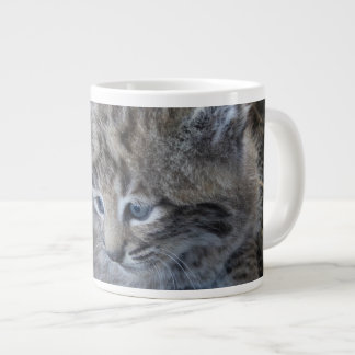 Bobcatjunges as cup