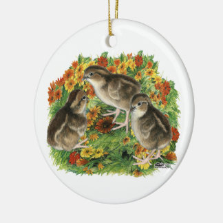 Bobwhite Garden Chicks Ceramic Ornament