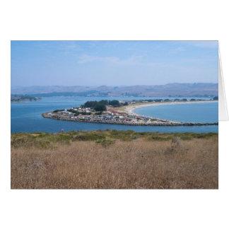Bodega Harbor and Doran Park Card