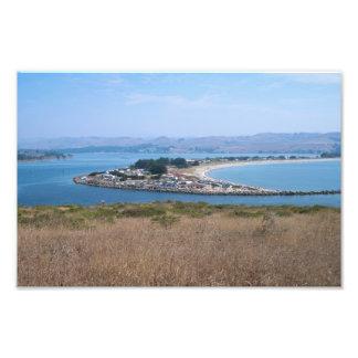 Bodega Harbor and Doran Park Photo Print