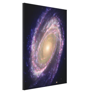 Bode's Galaxy Canvas Print
