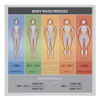 Body Mass Index Illustration with Body Silhouettes Poster
