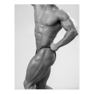 Bodybuilder In Posing Suit Postcard