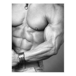 Bodybuilder Torso Postcard
