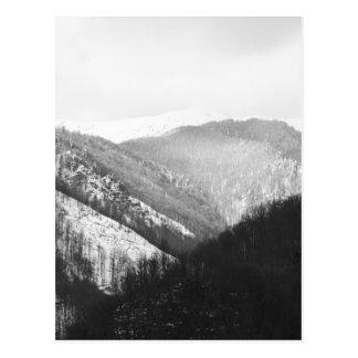 Boga - Romanian Winter Landscape Postcard